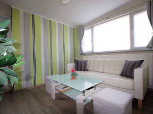 Heringsdorf Usedom Ferienwohnung 30 Wohnzimmer